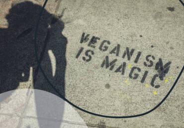 A flexitarian celebrates World Vegan Day